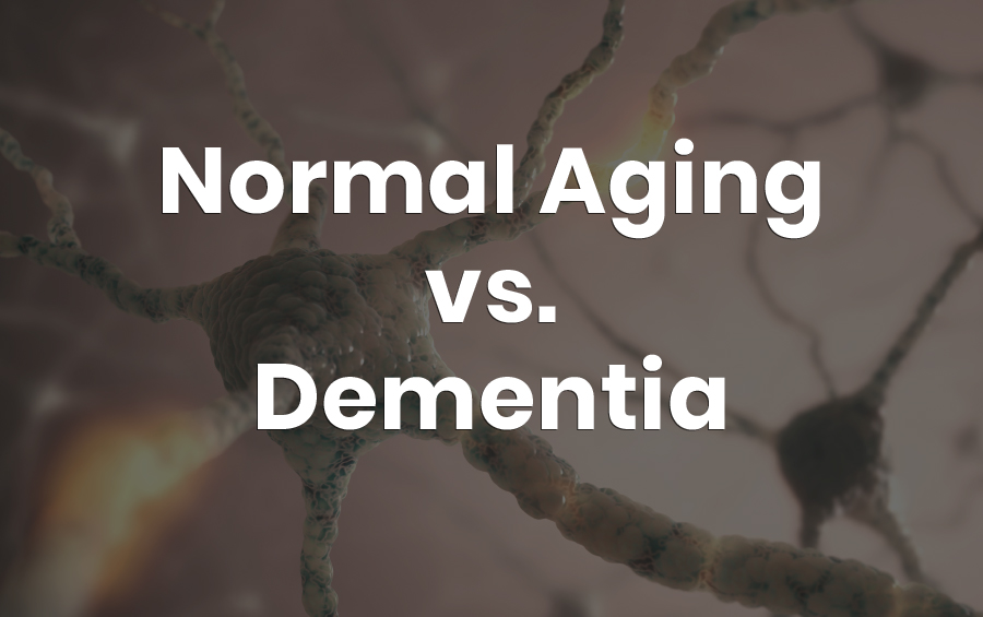 What Is Healthy Aging of The Brain? Part 2